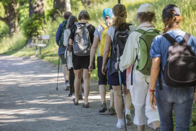 Pilgrims Walk For Future